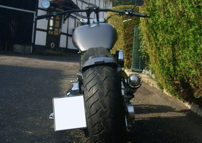 DSCI0665